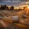 Why the modern recruiter is all farmer
